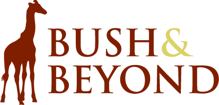 Bush and Beyond