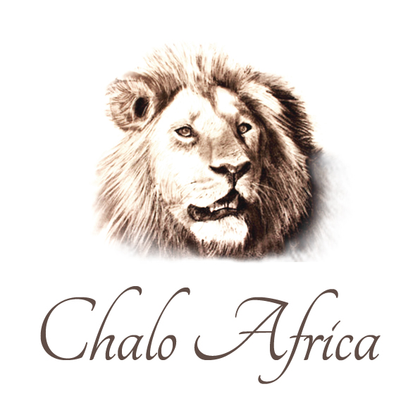 Chalo Africa Tours
